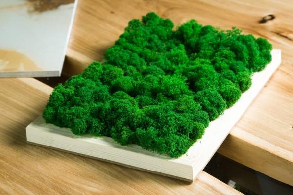 lazienka z elementami zieleni